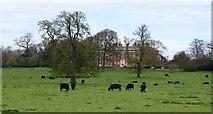 SE5158 : Beningbrough Park by Gordon Hatton