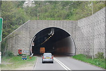 TQ4210 : The Cuilfail Tunnel by N Chadwick