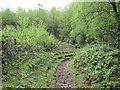 SJ7965 : Eroded bridle path by Jonathan Kington