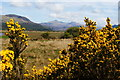 SH5837 : View Towards Snowdon, Gwynedd by Peter Trimming