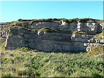 SH7683 : Limestone outcrop on the Great Orme by Eirian Evans