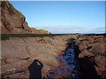 NT6779 : In The Groove : Getting down on the intertidal platform at Dunbar by Richard West