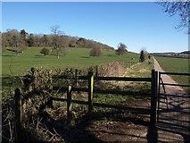 ST5545 : Path across The Park, Wells by Derek Harper