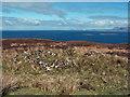 NG2563 : Ruin in Sròn Ocrhulan by Richard Dorrell