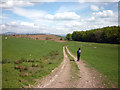 SD5575 : Bridleway near New Close Coppice by Karl and Ali