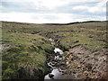 NY5969 : Farmal Sike near Ash Crag by Les Hull