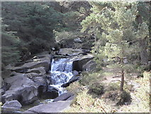 J3629 : Waterfall on The Glen River in Donard Forest , Newcastle by HENRY CLARK