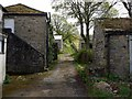 NY8837 : Lane to Chapel Fell behind the Golden Lion. St John's Chapel by Andrew Curtis