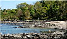 J4782 : The shore near Crawfordsburn by Albert Bridge