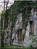 SM9532 : Ruined mansion, Llanstinan, south wall by ceridwen