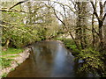 SS6707 : The view downstream from Brushford Bridge on the river Taw by Roger A Smith