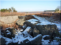 NT6378 : East Lothian Landscape : Concrete at Hedderwick by Richard West
