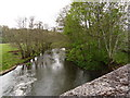 SS6811 : The view downstream from Eggesford Bridge on the river Taw by Roger A Smith