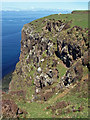 NG2262 : Waternish peninsula cliffs by Richard Dorrell
