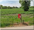 TL6199 : EII postbox in Fordham by Evelyn Simak