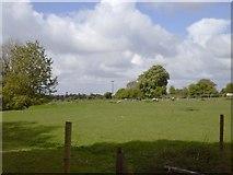 N9255 : Landscape, Co Meath by C O'Flanagan