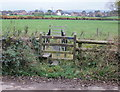 ST3393 : Stile, Candwr Road by Jaggery