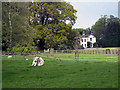 SJ5351 : Park House - a scene straight out of Jane Austen by Row17