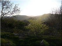 SJ2429 : Evening over Craig-y-Rhiw by Jeremy Bolwell