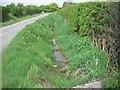 O0246 : Drainage Ditch, Co Meath by C O'Flanagan