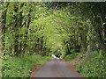 ST2213 : Lane to Royston Water by Derek Harper