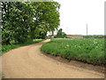 TF6918 : Farm road, Ashwicken by Evelyn Simak