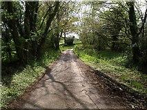 ST2114 : Lane near Otterford by Derek Harper