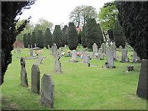 SK8354 : All Saints' Churchyard, Coddington by William Metcalfe