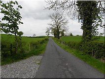 H4178 : Road at Castletown by Kenneth  Allen