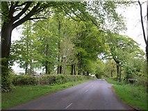 ST2113 : Road across the Blackdown plateau by Derek Harper