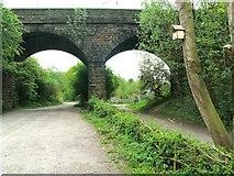 SJ8762 : Biddulph Valley Way by Raymond Knapman