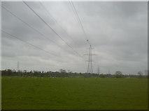 N9648 : Pylons, Co Meath by C O'Flanagan