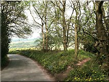 SJ9063 : Gritstone Trail signpost by Raymond Knapman