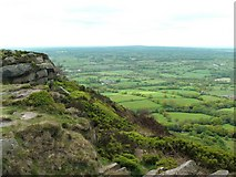 SJ9063 : Rock outcrop on The Cloud by Raymond Knapman