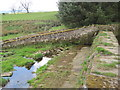 NT9907 : Nertherton Fish Ladder and Dam by Les Hull