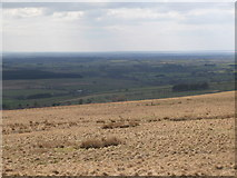 NY5775 : Panorama from the cairn north of Borderrigg (7: WSW) by Mike Quinn