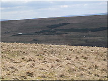 NY5775 : Panorama from the cairn north of Borderrigg (11: SSE) by Mike Quinn