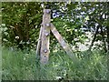 SU5791 : Brightwell-cum-Sotwell, Fence post by Roger Templeman