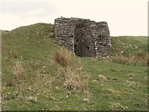 NY5675 : Lime kiln below The Pike (4) by Mike Quinn