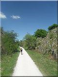 SK1460 : Tissington Trail near Heathcote by Anthony Parkes