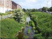 O0652 : Broadmeadow River, Co Meath by C O'Flanagan
