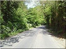 N8957 : Country Road, Co Meath by C O'Flanagan