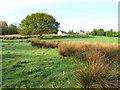SN1735 : Penyrallt Uchaf farm. by Derek Voller