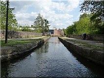 SJ9398 : Aqueduct over the River Tame by Christine Johnstone