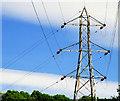 J3067 : Pylon, Dixon Park, Dunmurry (3) by Albert Bridge
