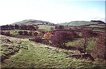 N5877 : Path on Slieve na Calliagh by Richard Webb