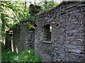 SN1640 : Ruins in Cwm Ffrwd by ceridwen