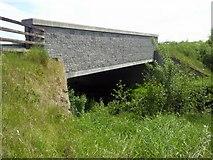 N8053 : New Bridge, Laracor, Co Meath by C O'Flanagan