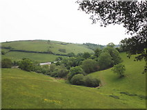 SX8158 : Looking down to the River Dart by Roger Cornfoot