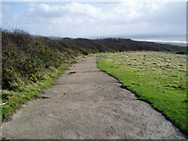 SY5088 : Track to Cogden Beach by Peter Holmes
